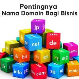 pentinggnya nama domain. COM